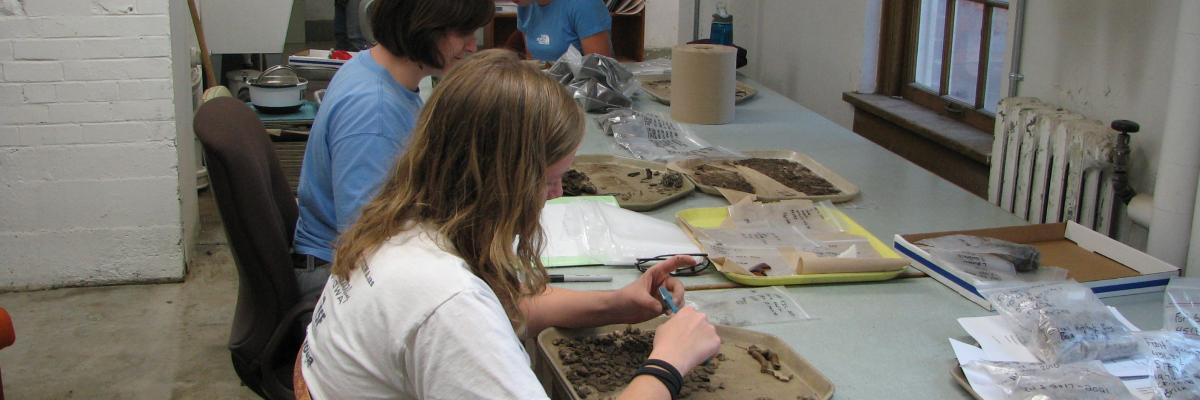 Anthropology students clean and sort artifacts from the KIC